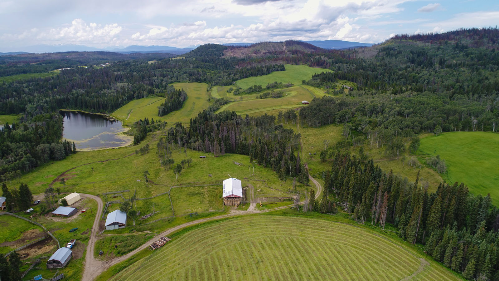 Wistaria cattle ranch 54