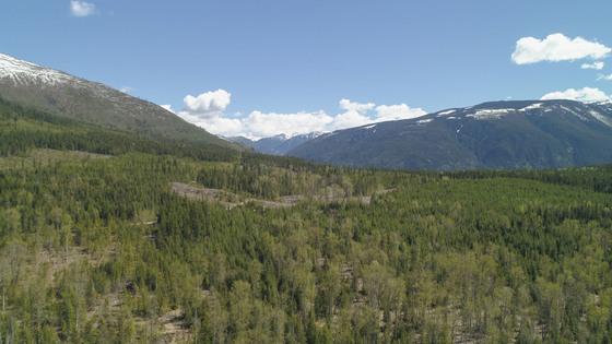 640 Acre Settlement Opportunity near Whatshan Lake - Edgewood, BC