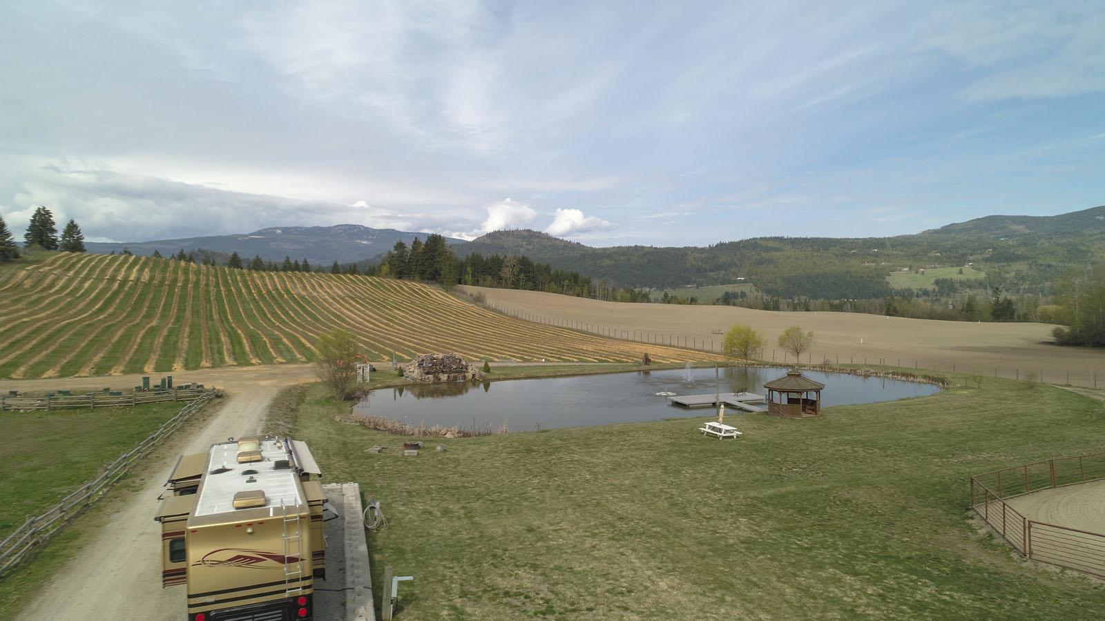 Baccata ridge winery 03
