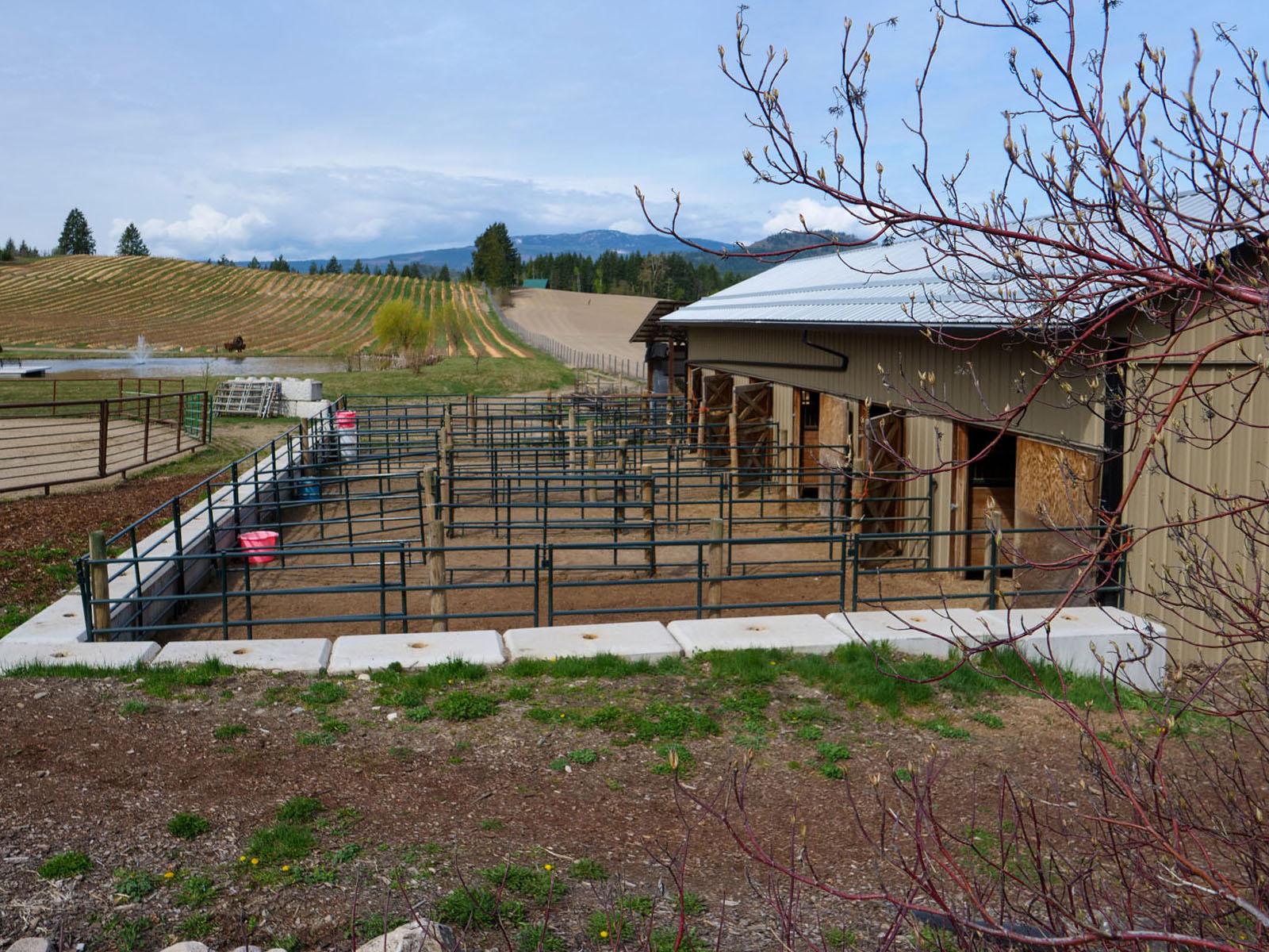 Baccata ridge winery 08
