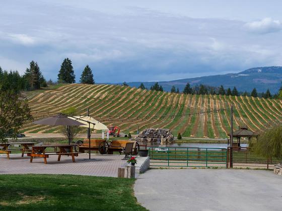 Thumb baccata ridge winery 30