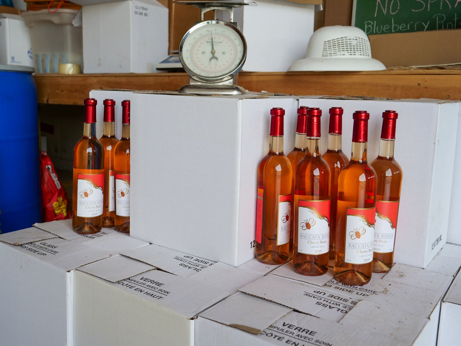 Baccata ridge winery 41