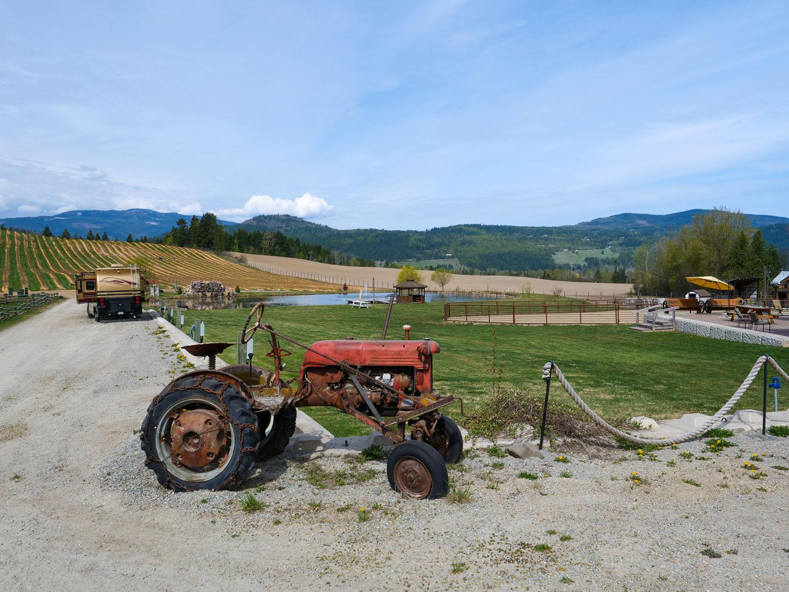 Baccata ridge winery 51
