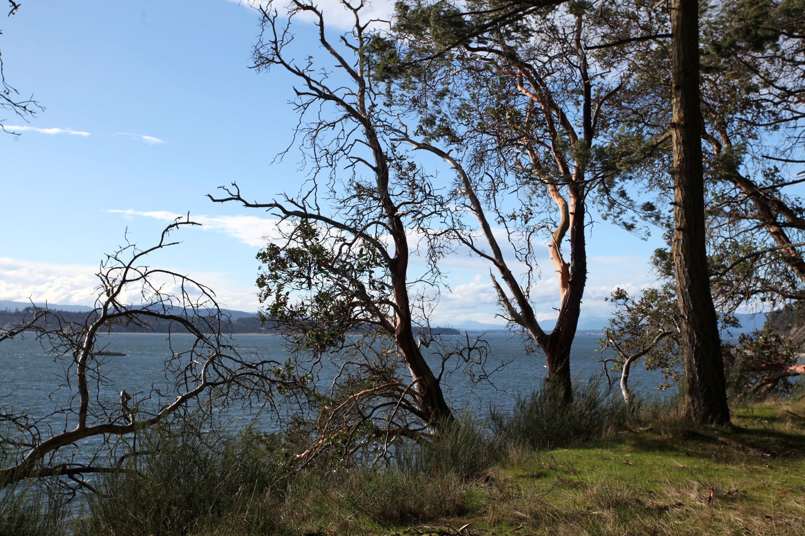Sidney island 06
