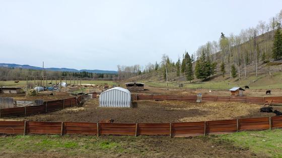 Thumb moose horn ranch 21