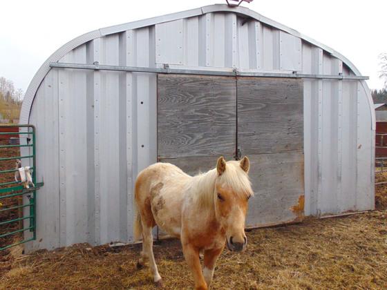 Thumb moose horn ranch 23