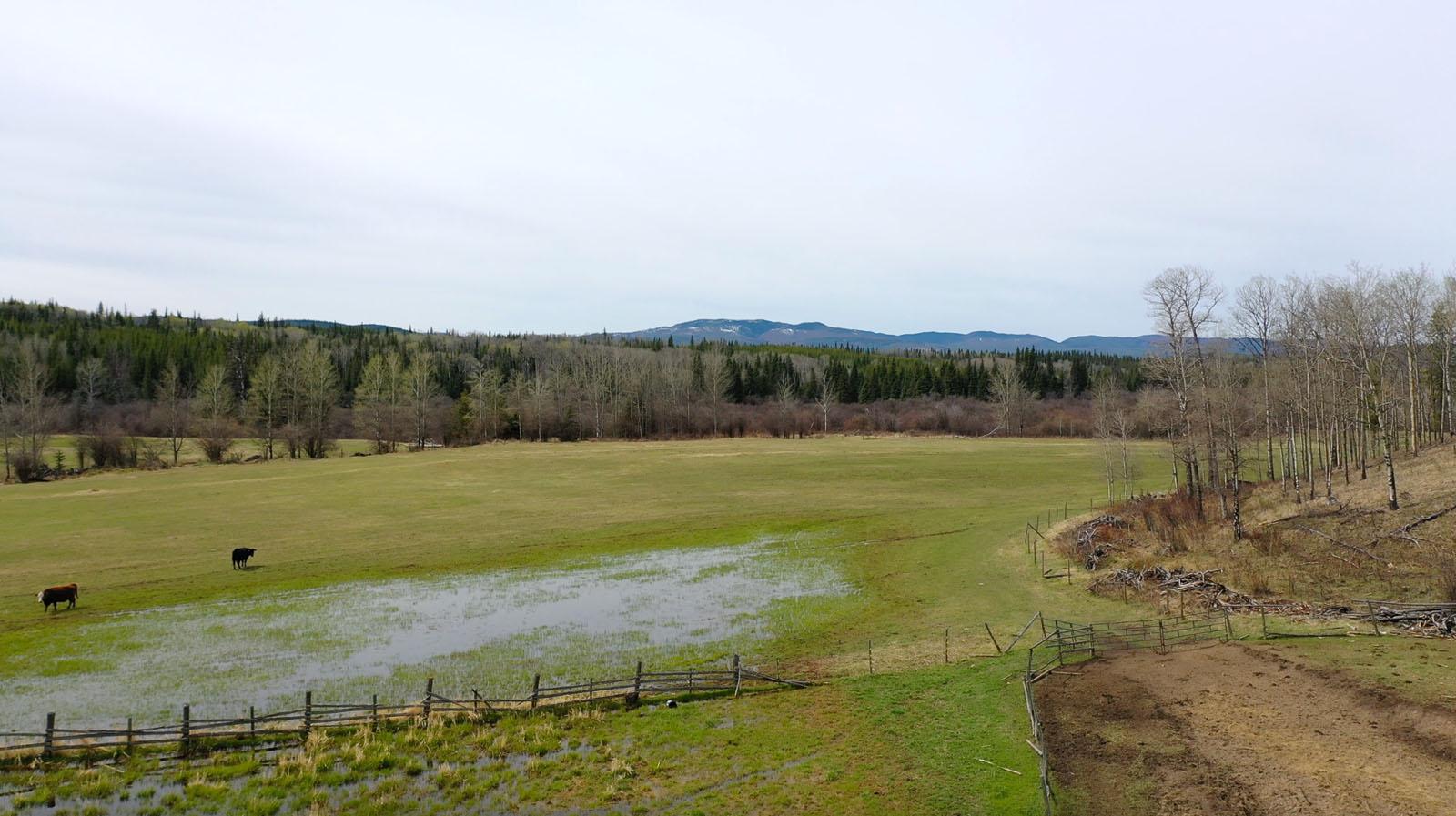 Moose horn ranch 29