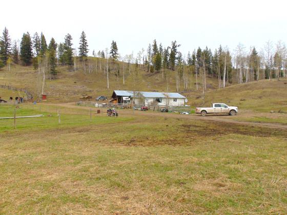 Thumb moose horn ranch 31