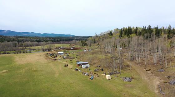 Thumb moose horn ranch 43
