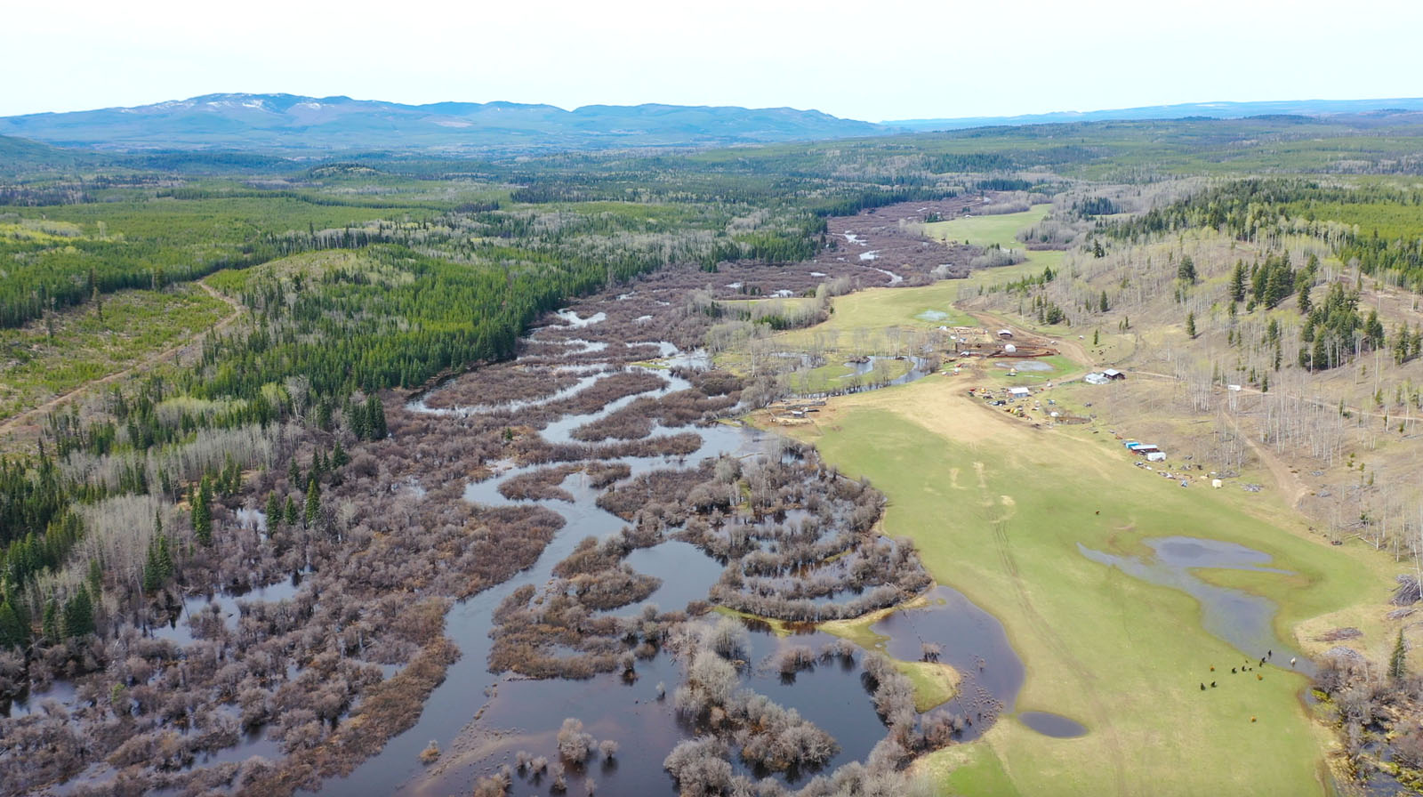 Moose horn ranch 47