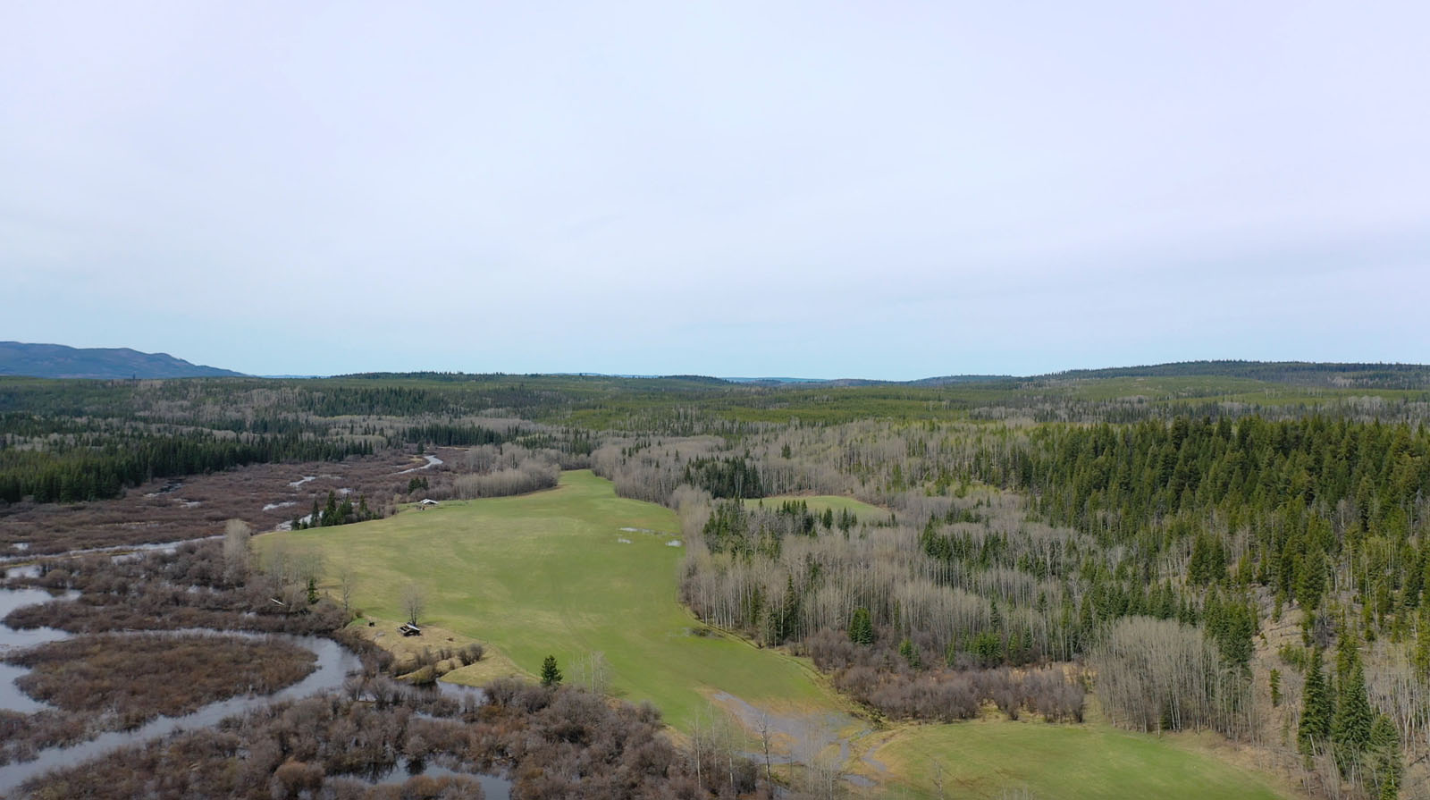 Moose horn ranch 53