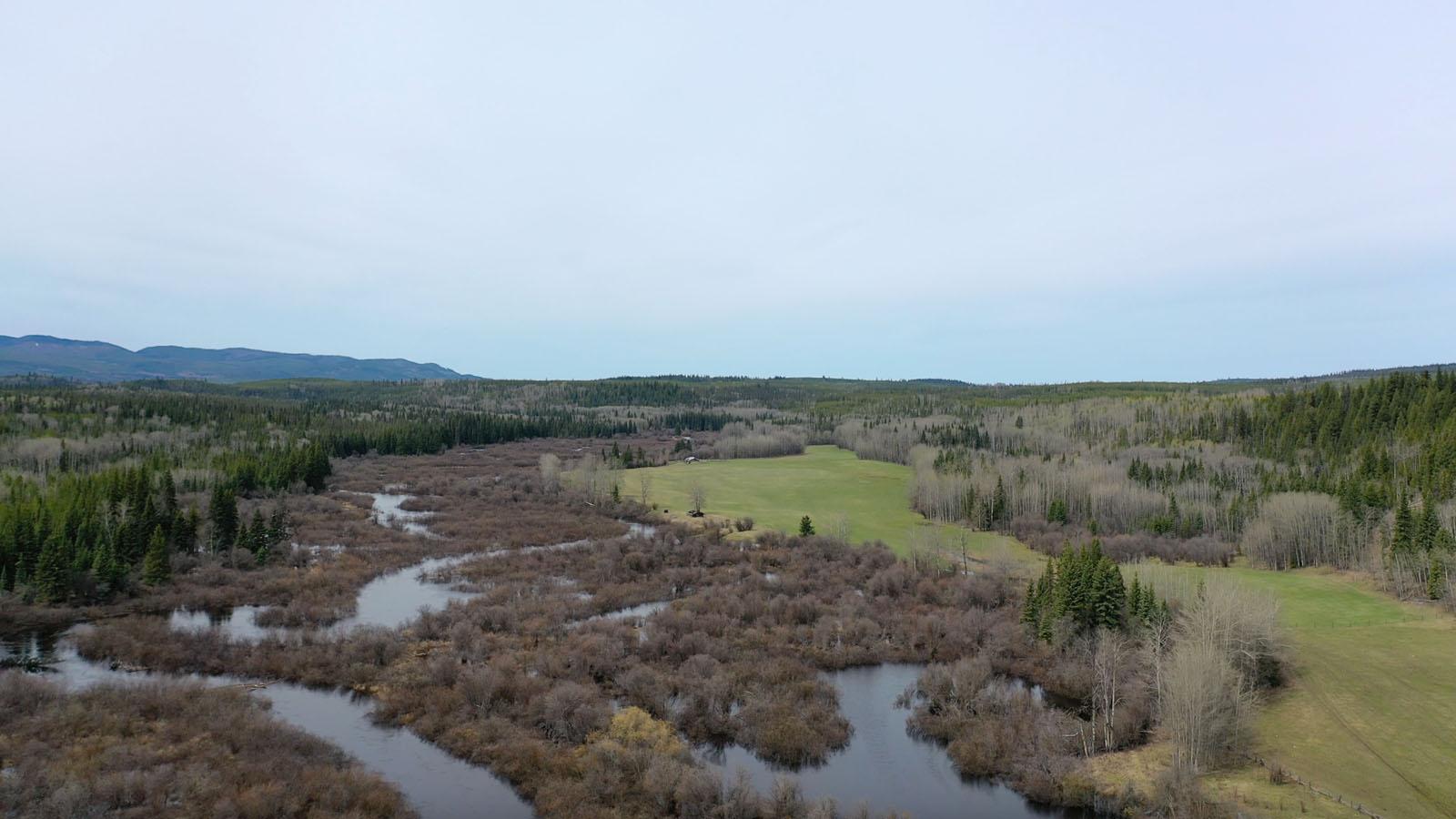 Moose horn ranch 54