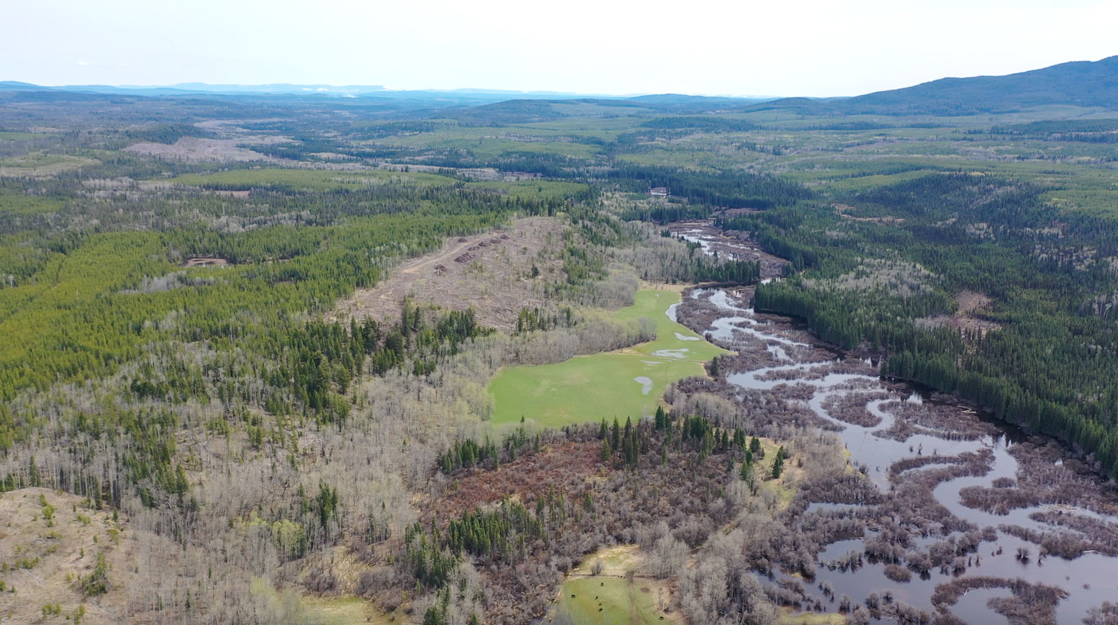 Moose horn ranch 56