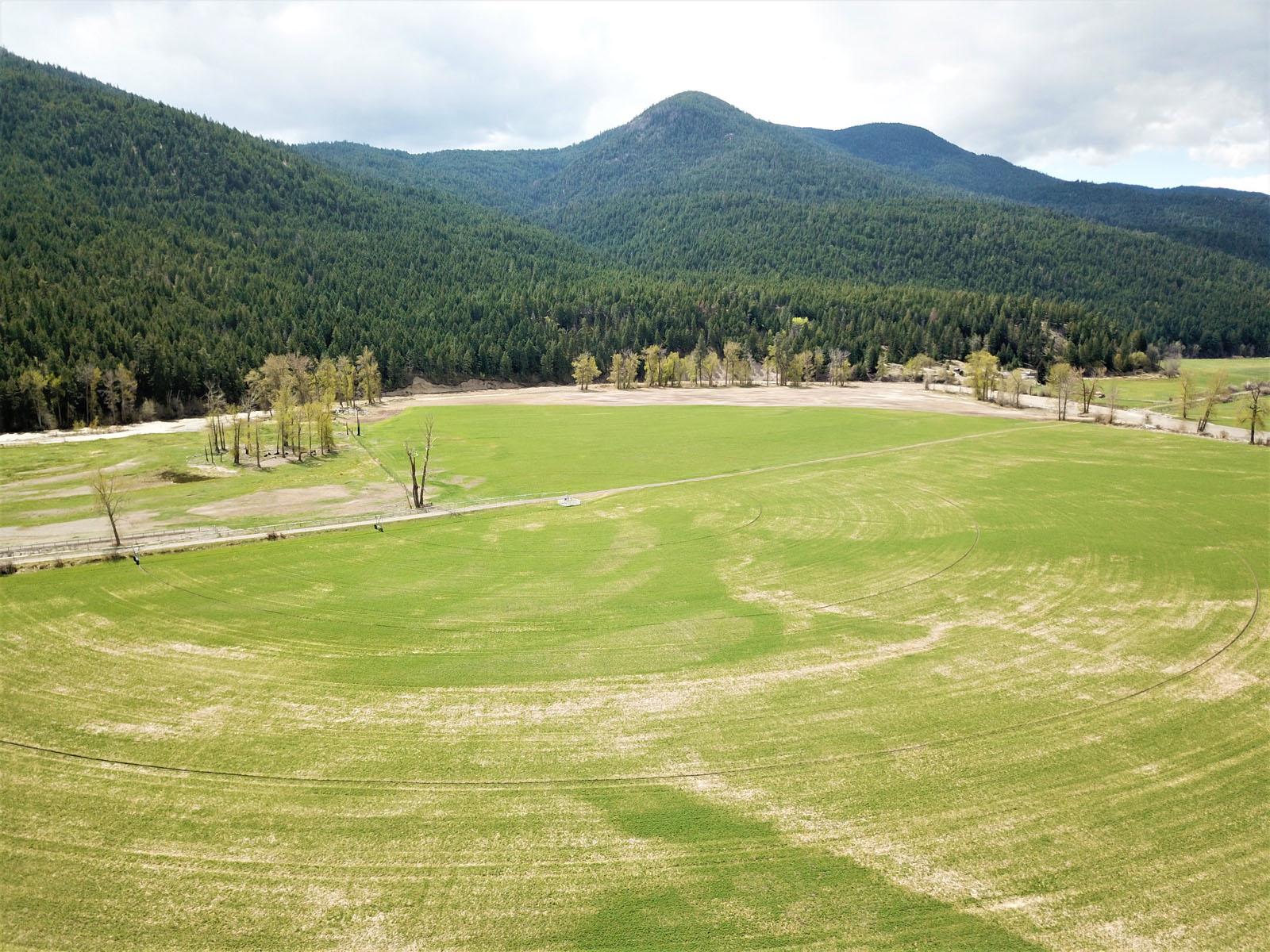 Kuiper ranch 10