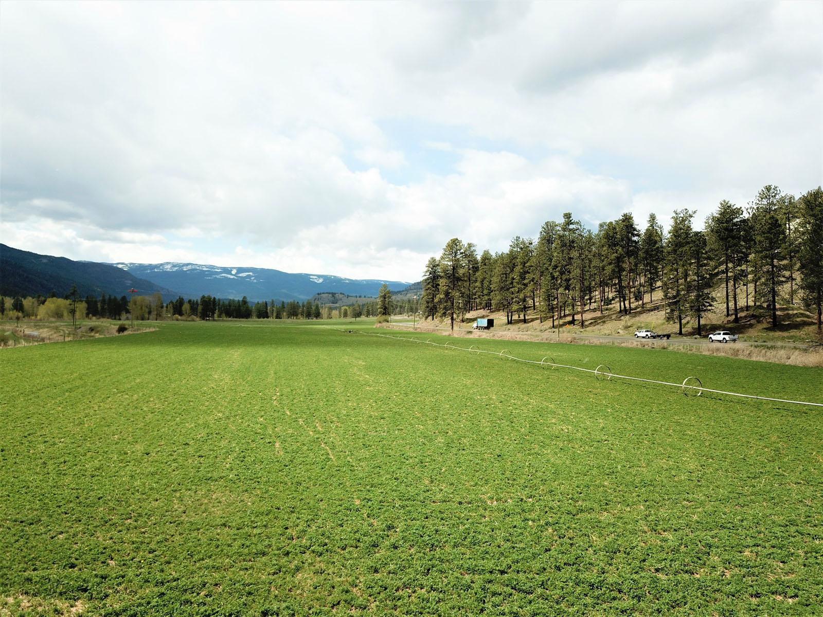 Kuiper ranch 14