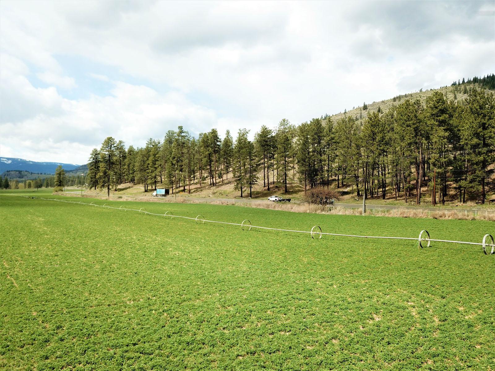 Kuiper ranch 15