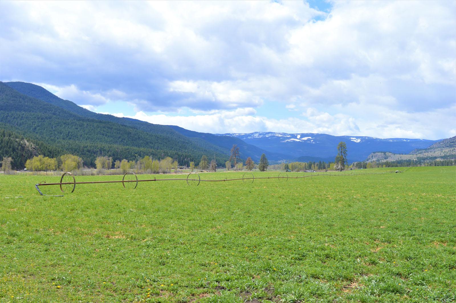 Kuiper ranch 17