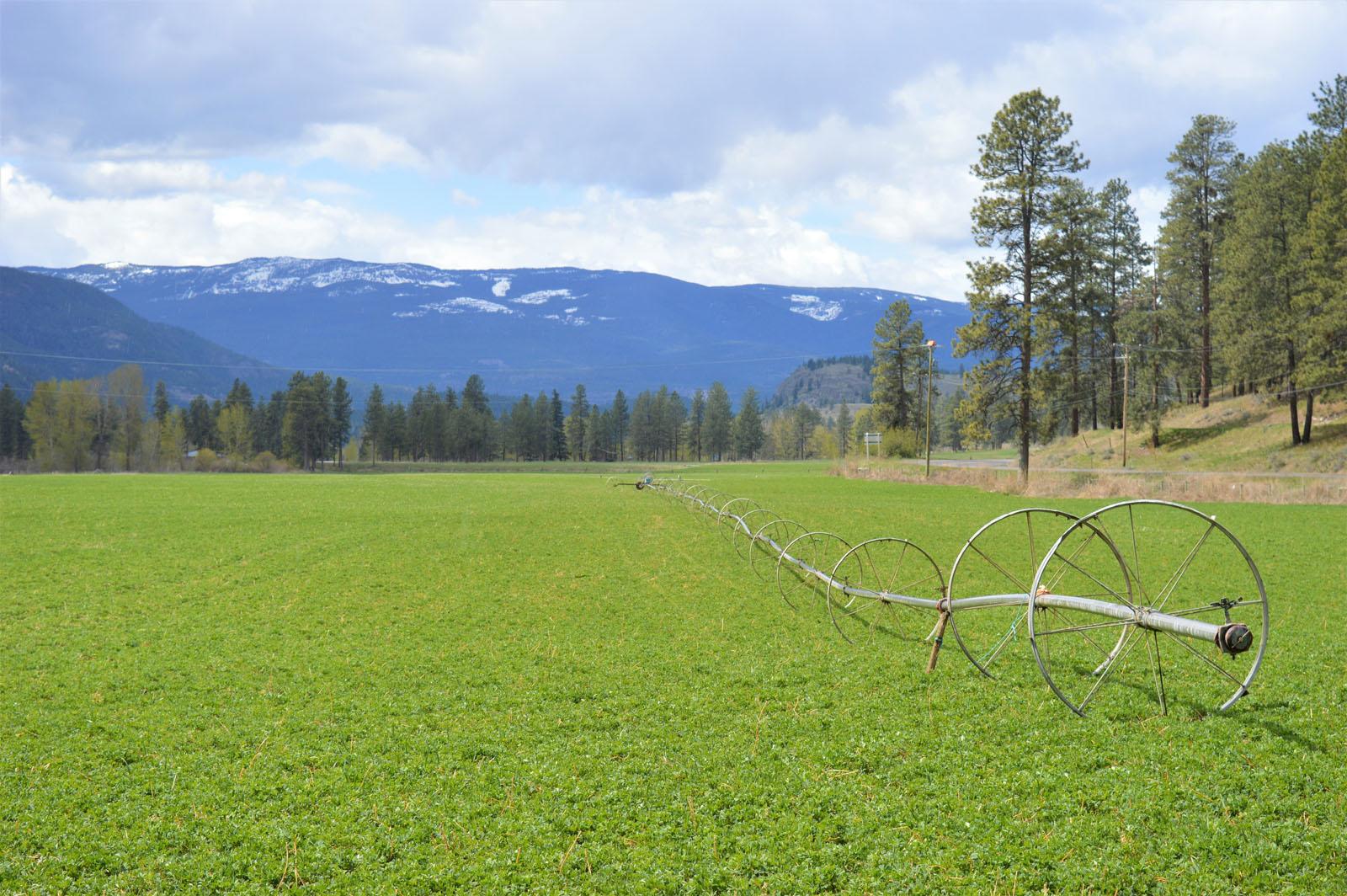 Kuiper ranch 18