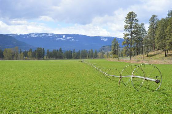 Thumb kuiper ranch 18