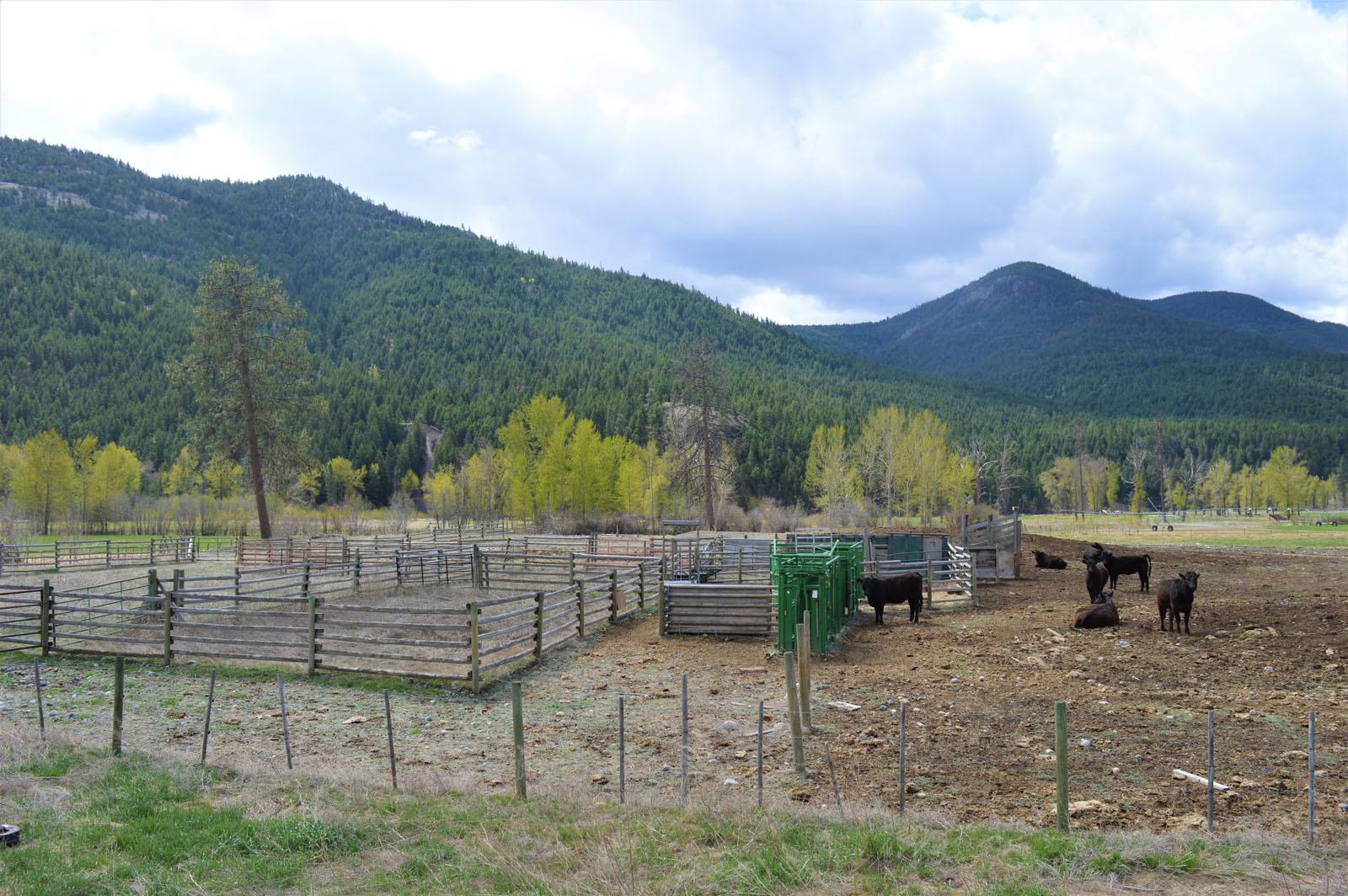 Kuiper ranch 37