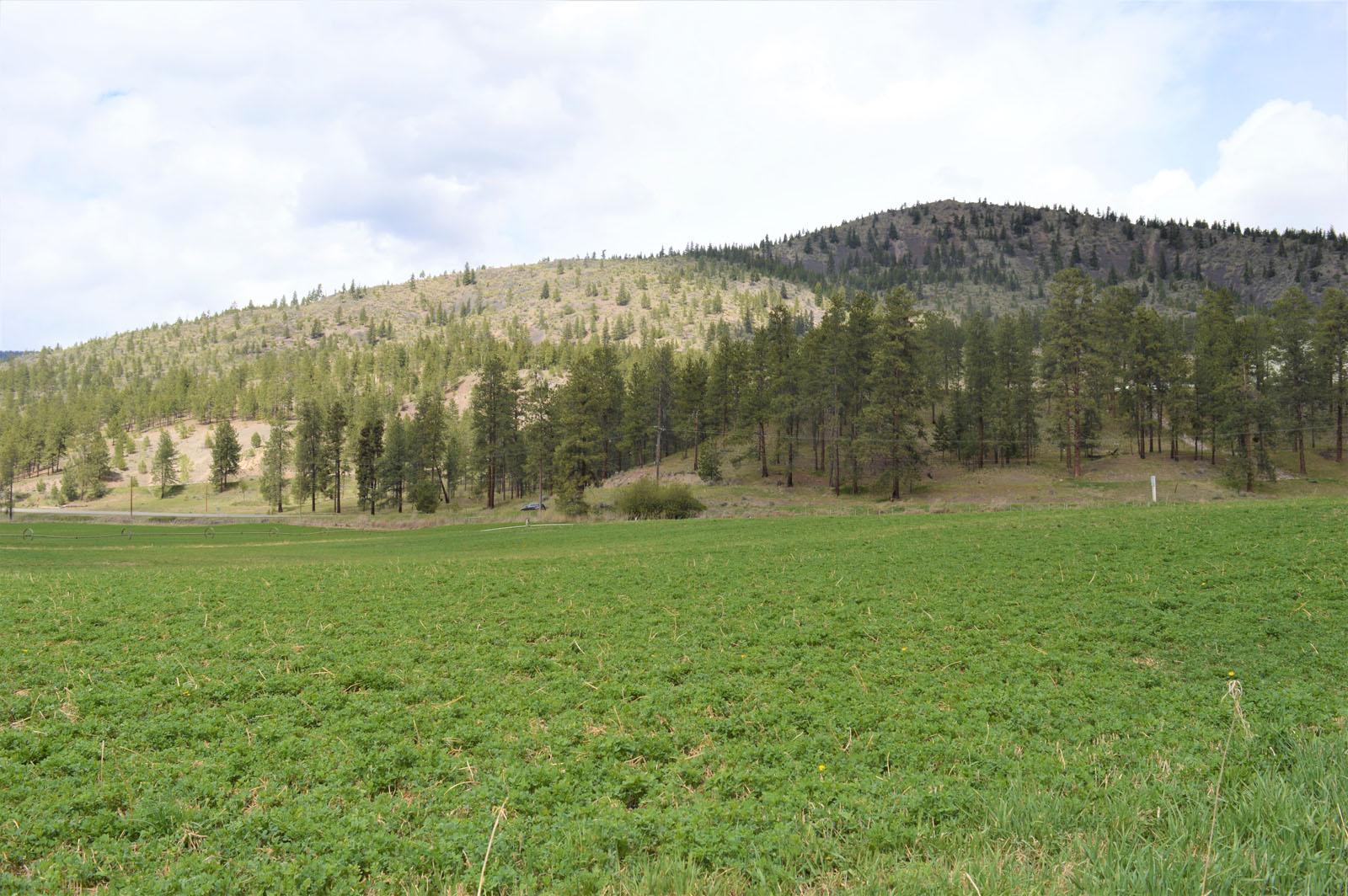 Kuiper ranch 45