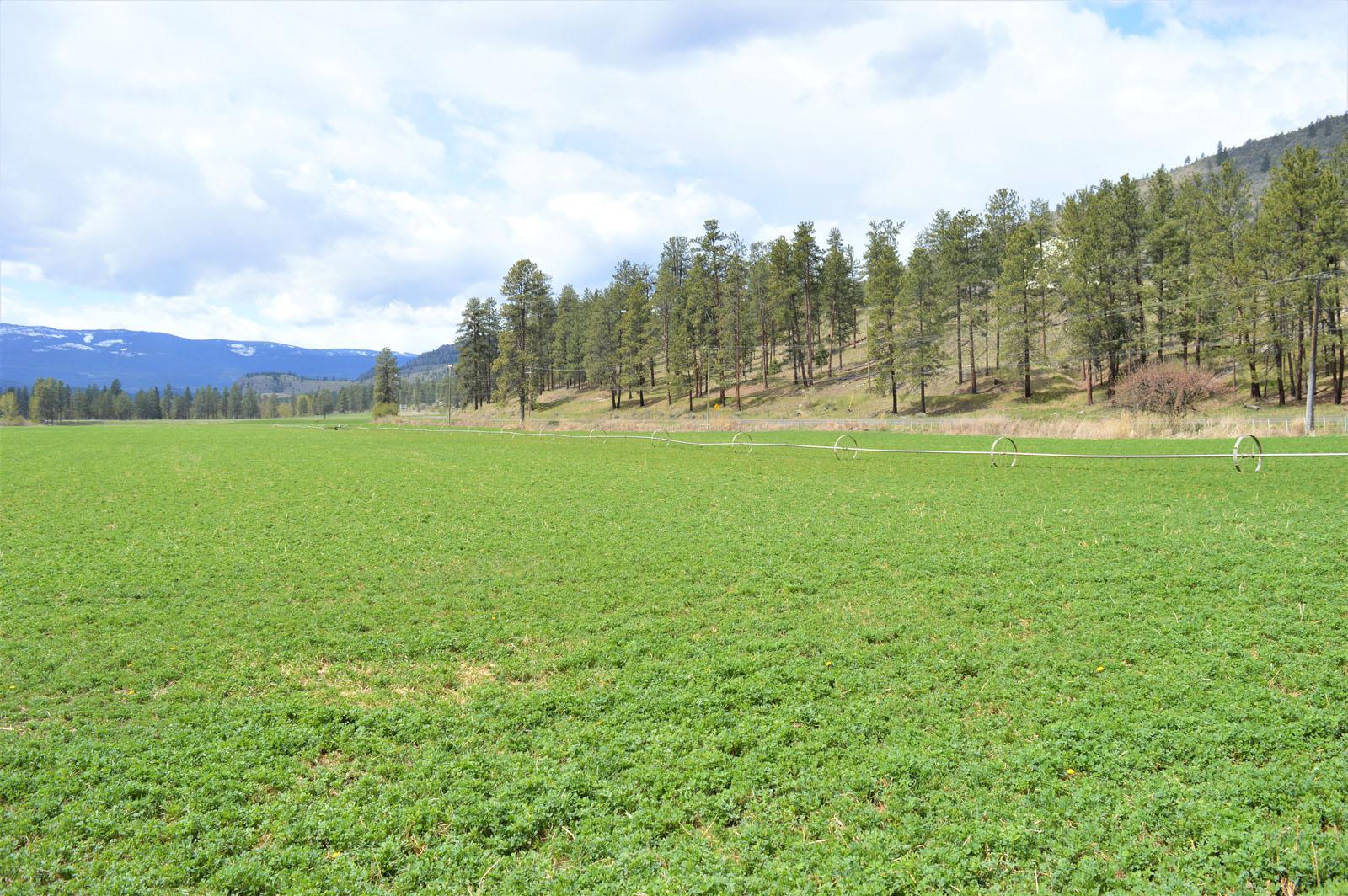 Kuiper ranch 46