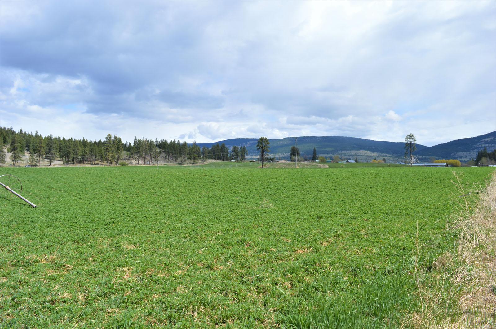 Kuiper ranch 48