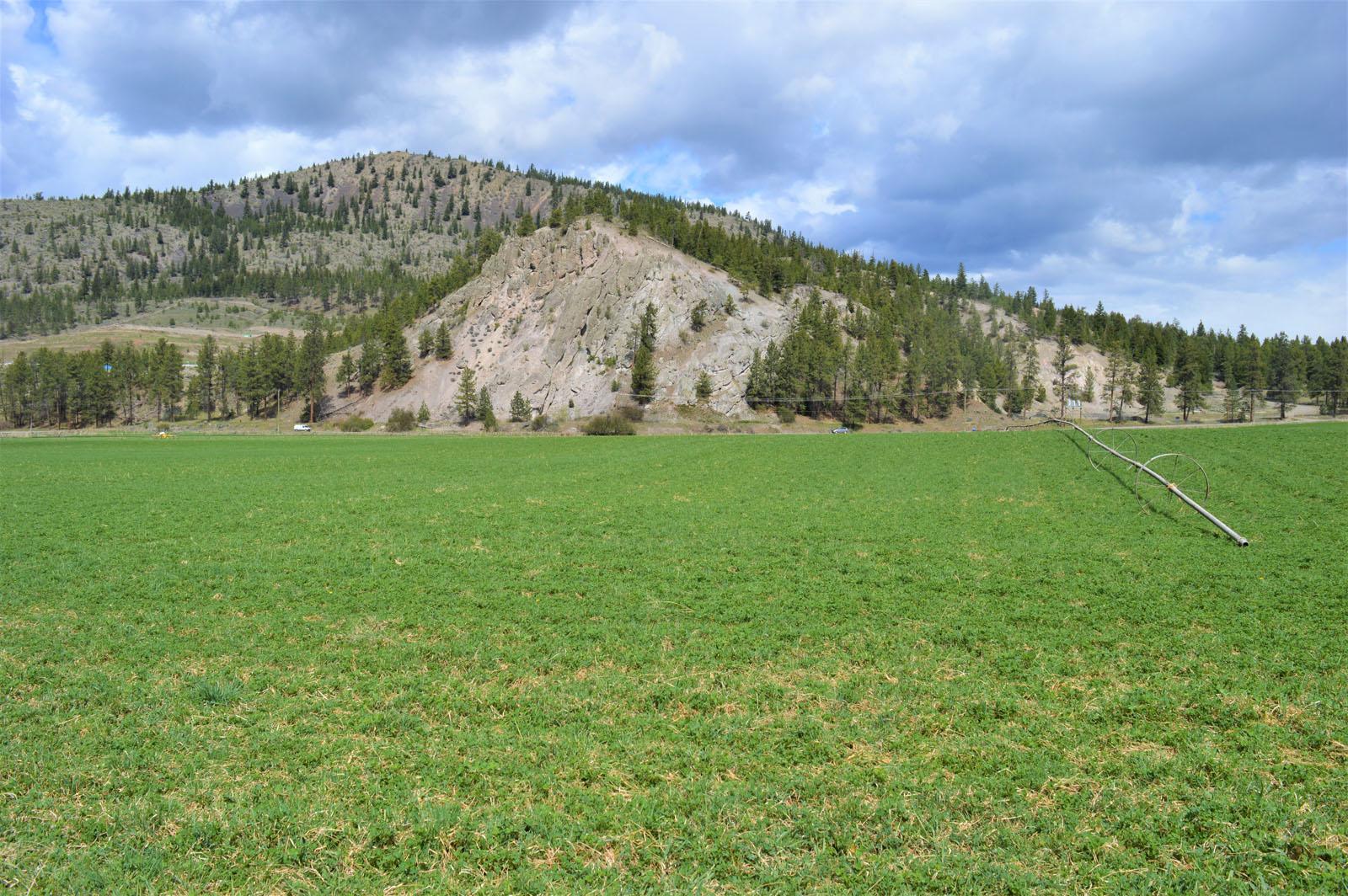 Kuiper ranch 49