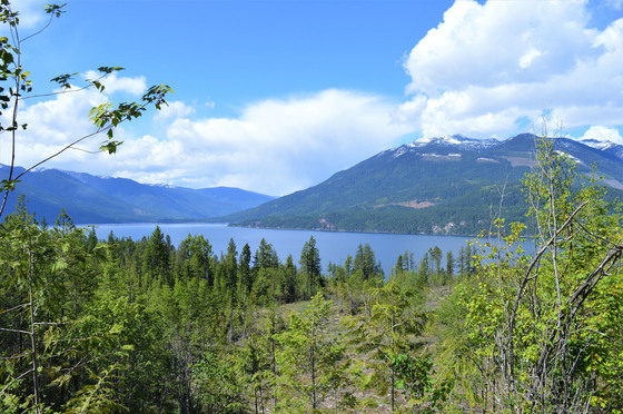 Thumb kootenay lake 10