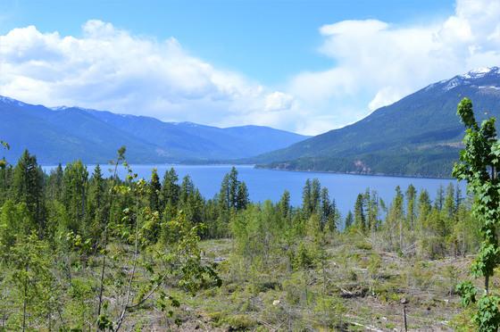 Thumb kootenay lake 11