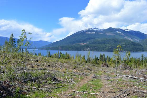 Thumb kootenay lake 12