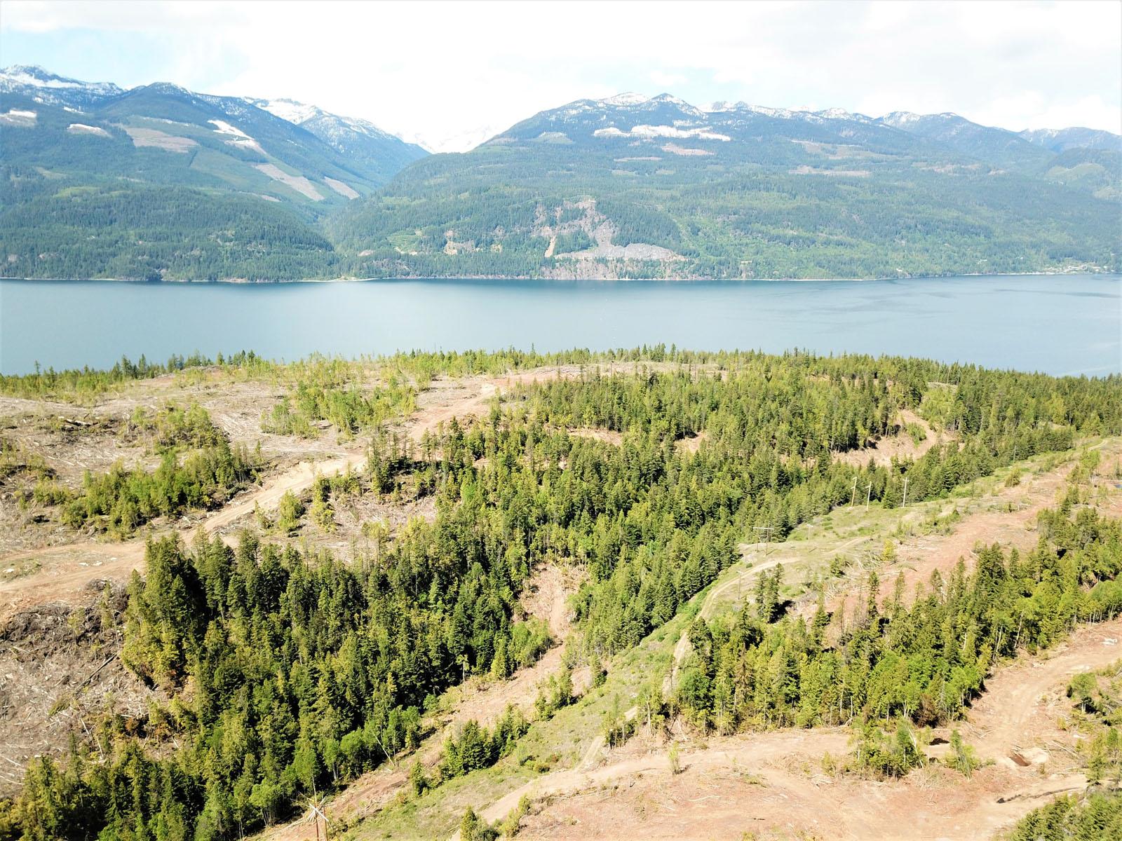 Kootenay lake 11