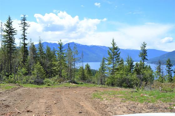 Thumb kootenay lake 25
