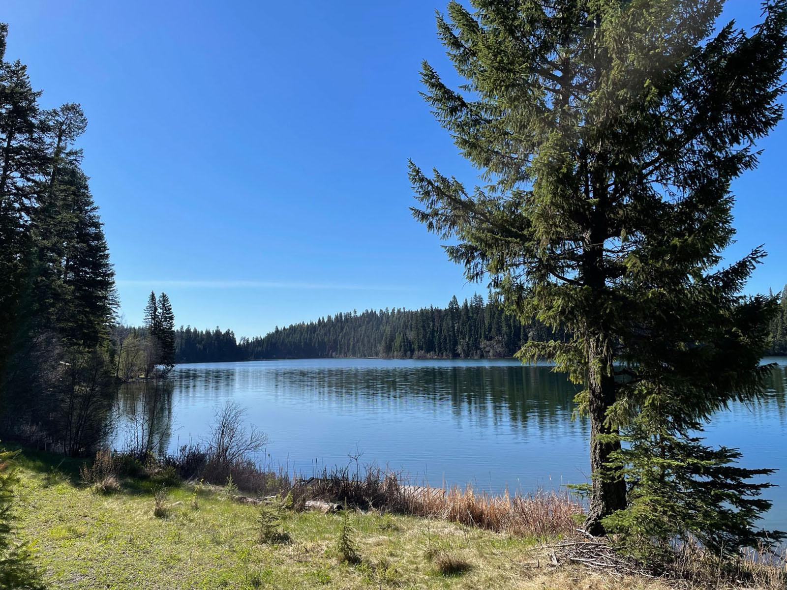 Fawn lake 02