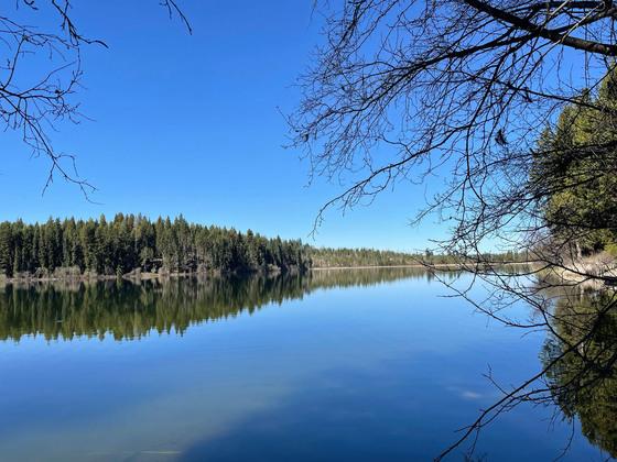 Thumb fawn lake 03