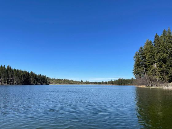 Thumb fawn lake 04