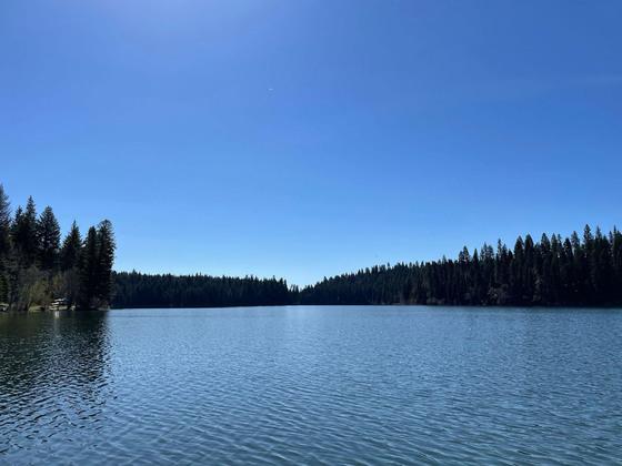 Thumb fawn lake 05
