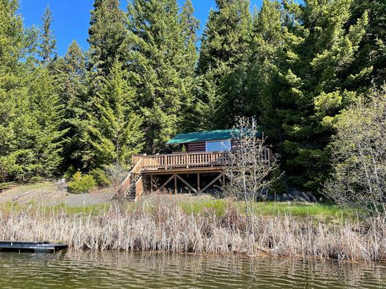 Thumb fawn lake 11