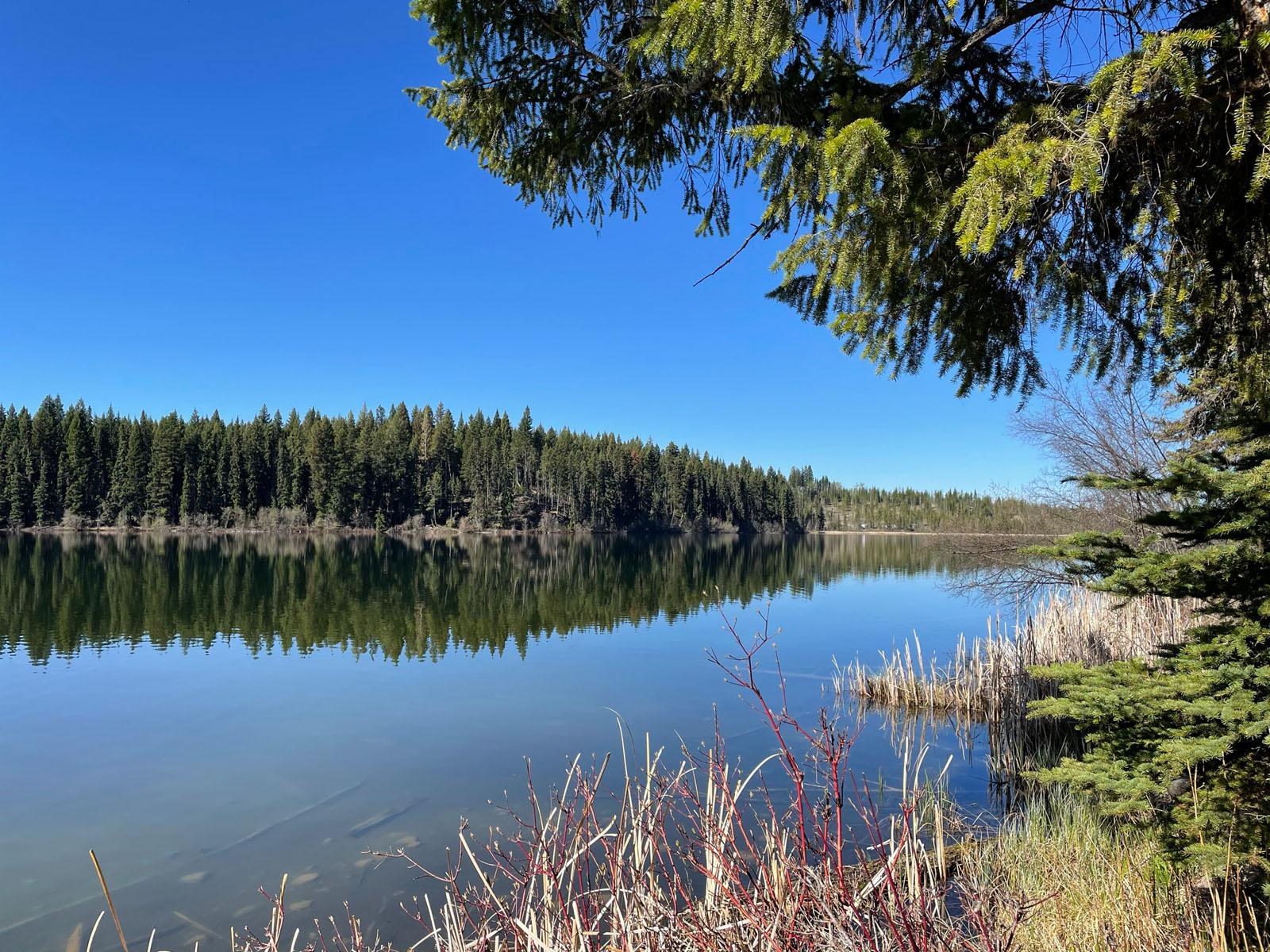 Fawn lake 20