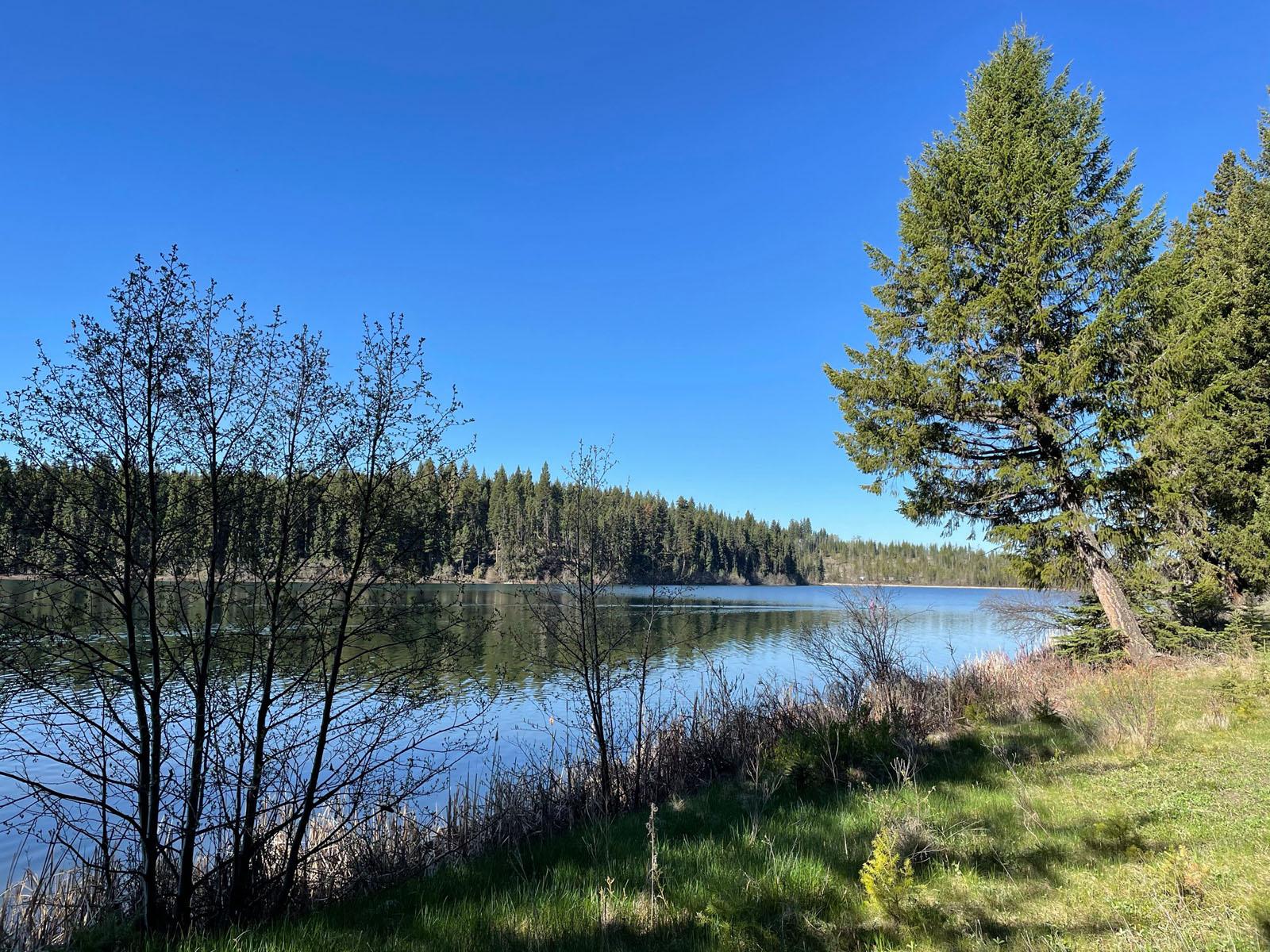 Fawn lake 28
