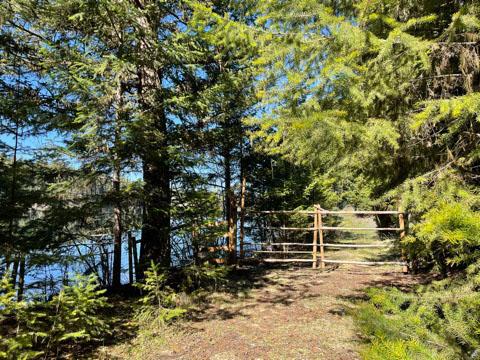 Fawn lake 30