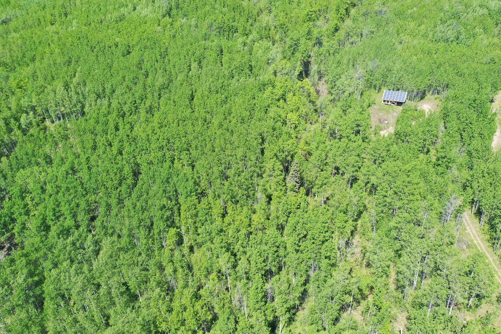 Moberly lake cabin 13