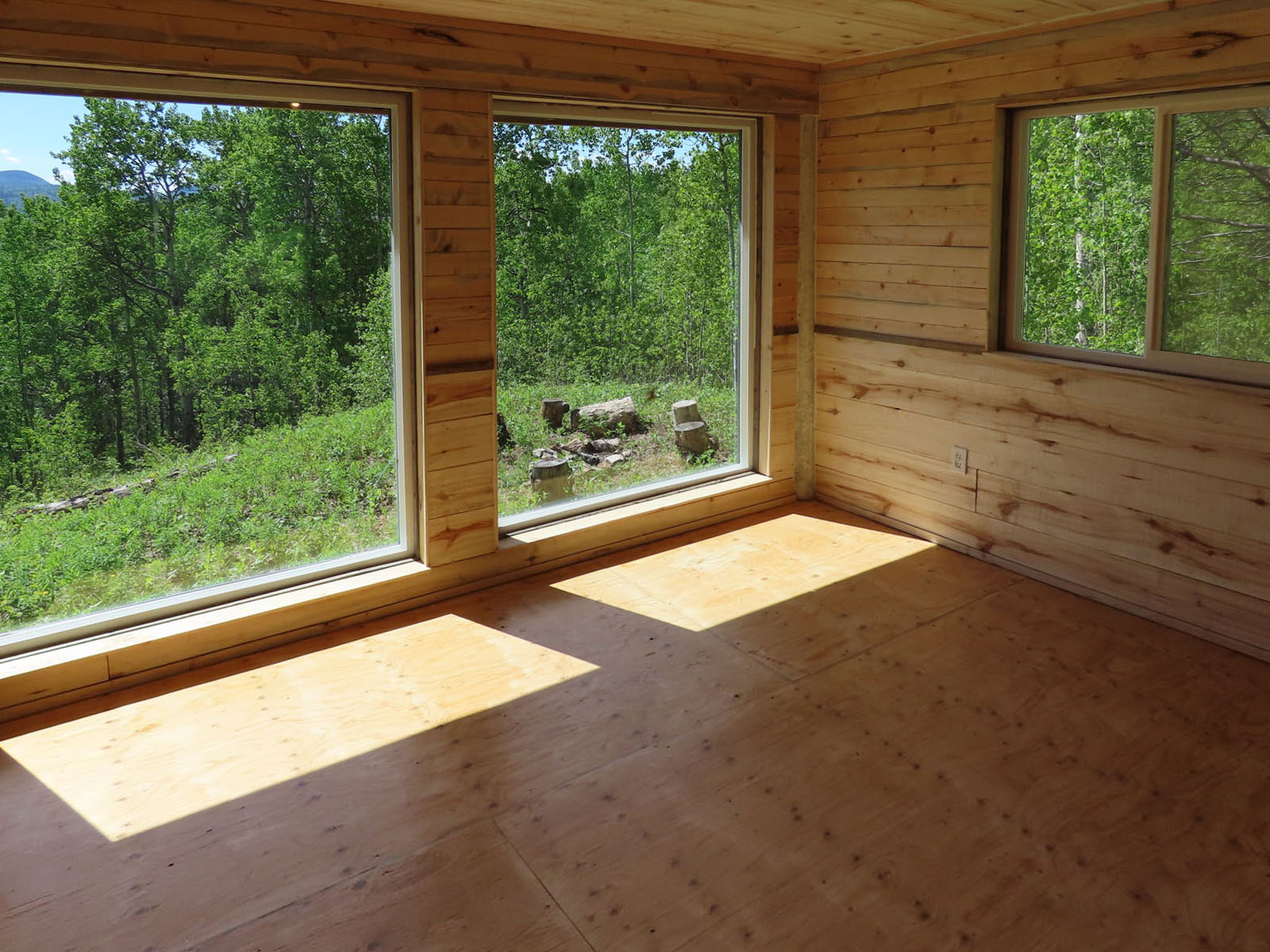 Moberly lake cabin 45