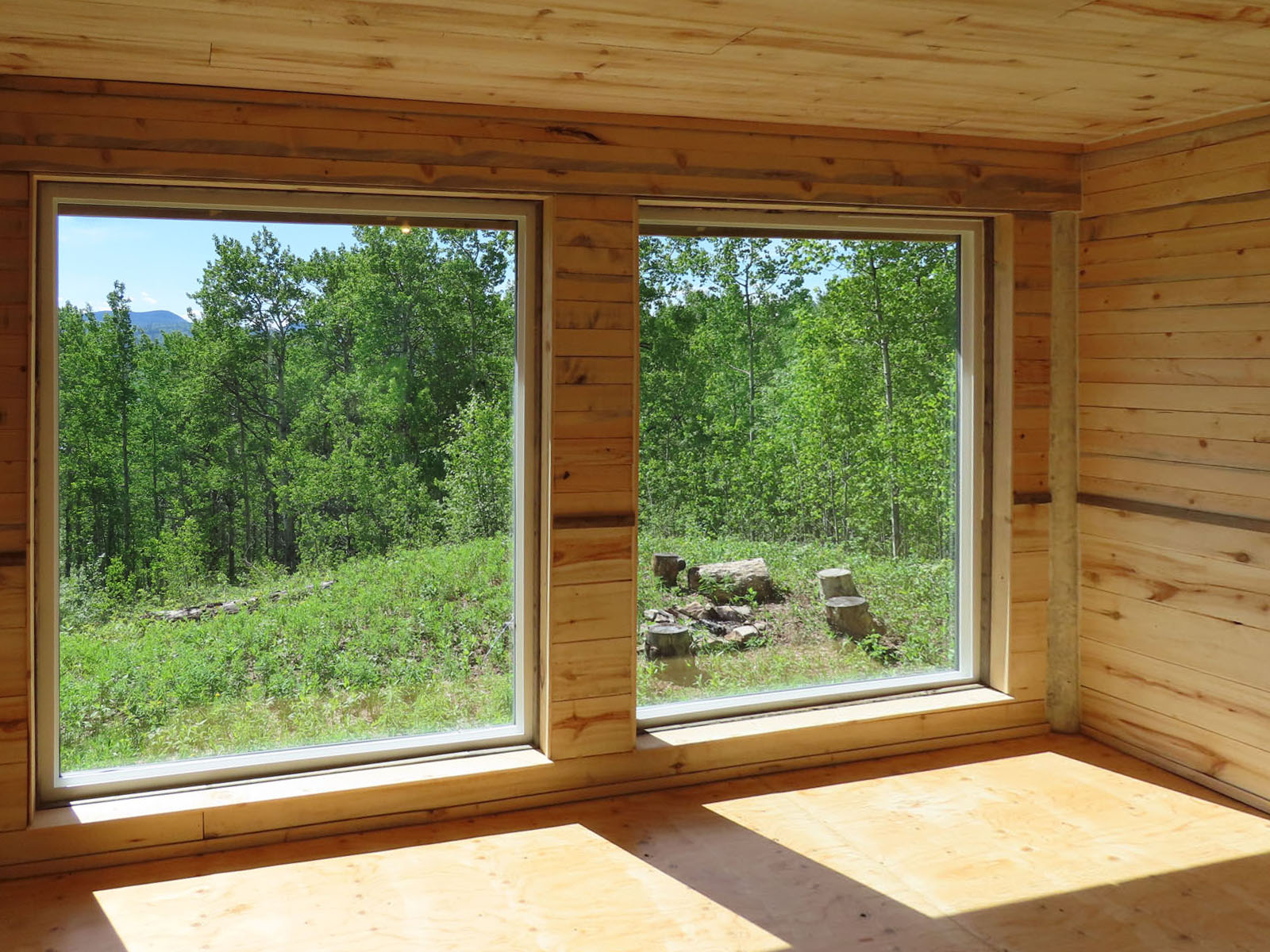 Moberly lake cabin 46