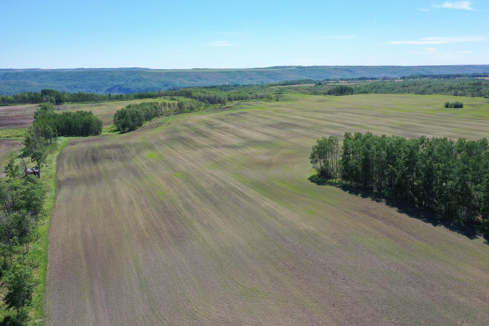 Fort st john grain farm 003