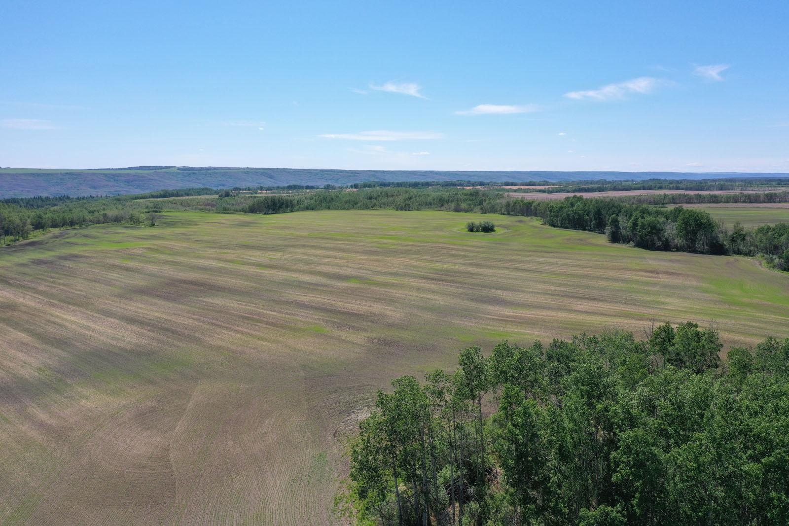 Fort st john grain farm 004