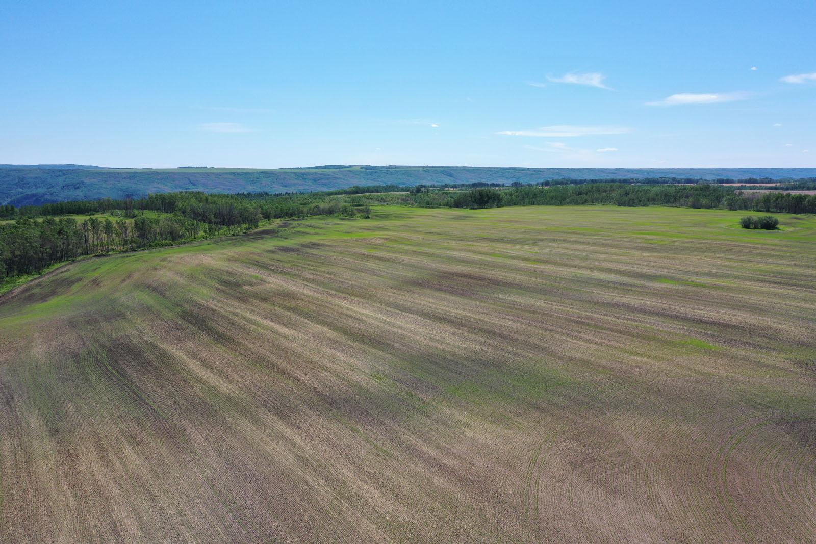 Fort st john grain farm 007