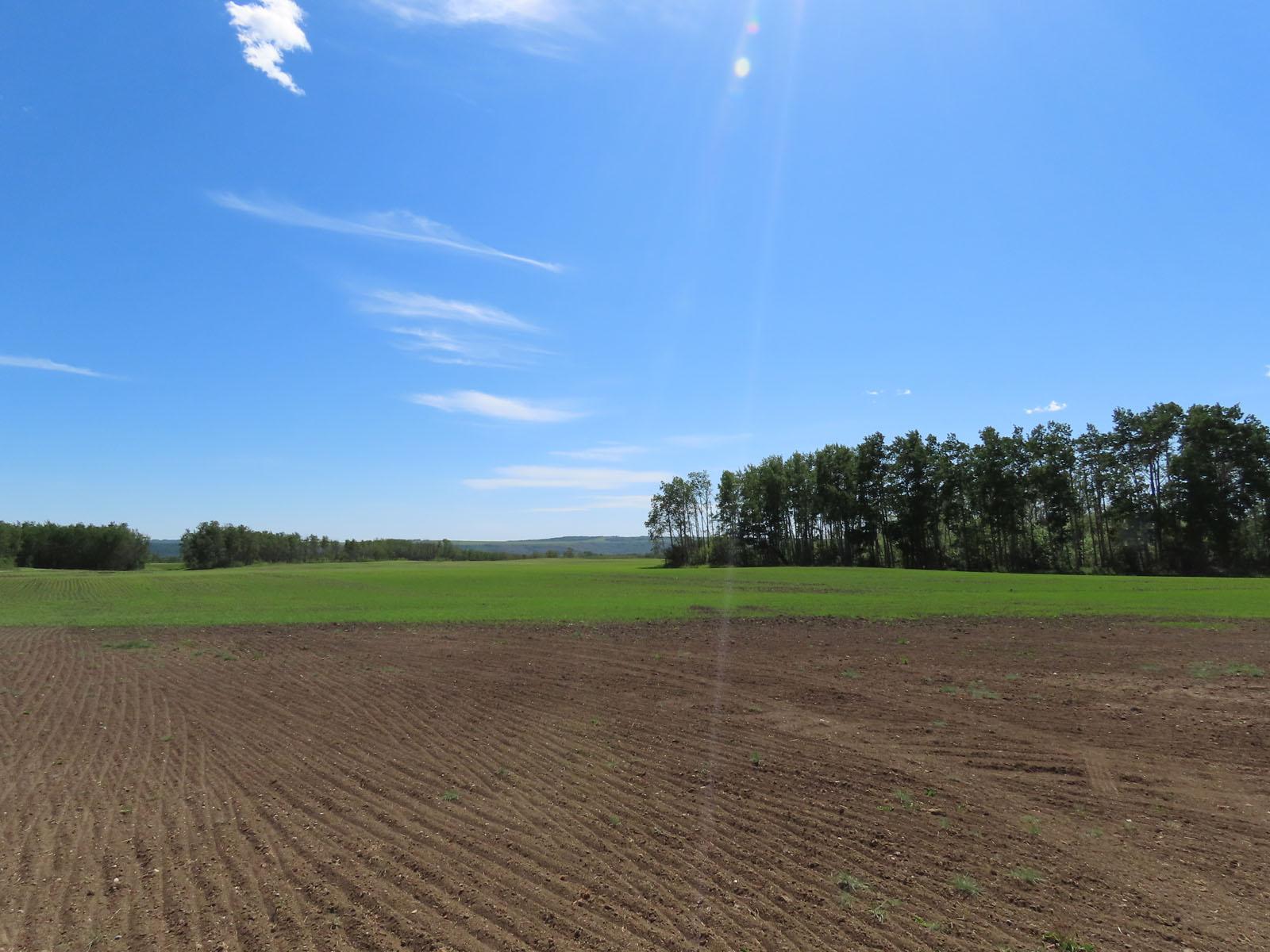 Fort st john grain farm 055