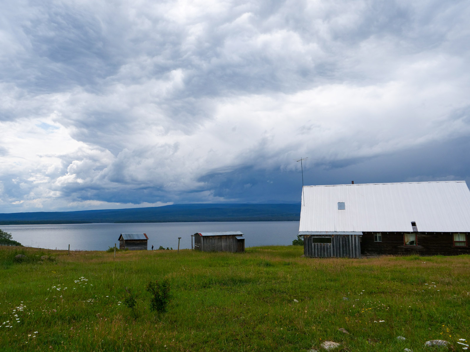 Wistaria farmland ootsa lake 08