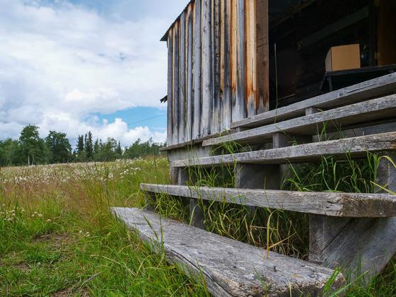 Thumb wistaria farmland ootsa lake 14